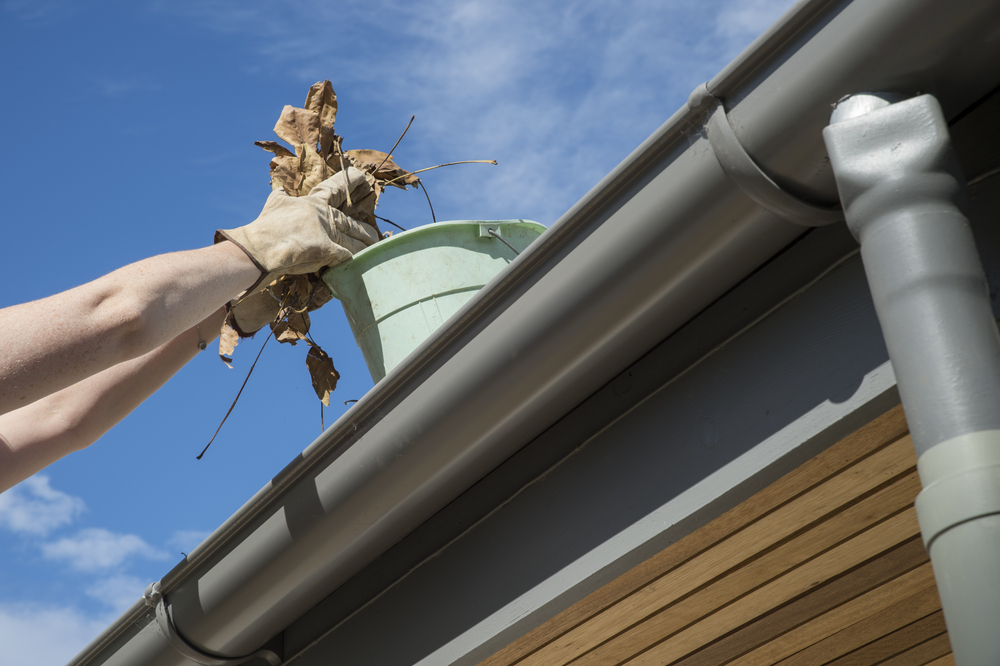 gutter cleaning & soft washing wellington